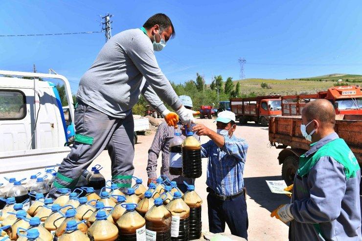 Başkent'te 8 milyon sebze fidesi dağıtımı başladı