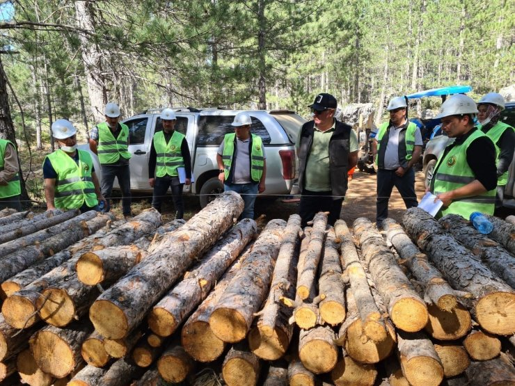 Beyşehir'de orman muhafaza memurları ile teknik elemanlara işletme pazarlama eğitimi