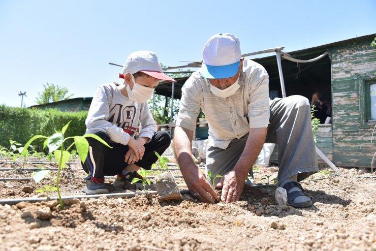 Karatay Belediyesi Hobi Bahçeleri'nde faaliyetler başladı