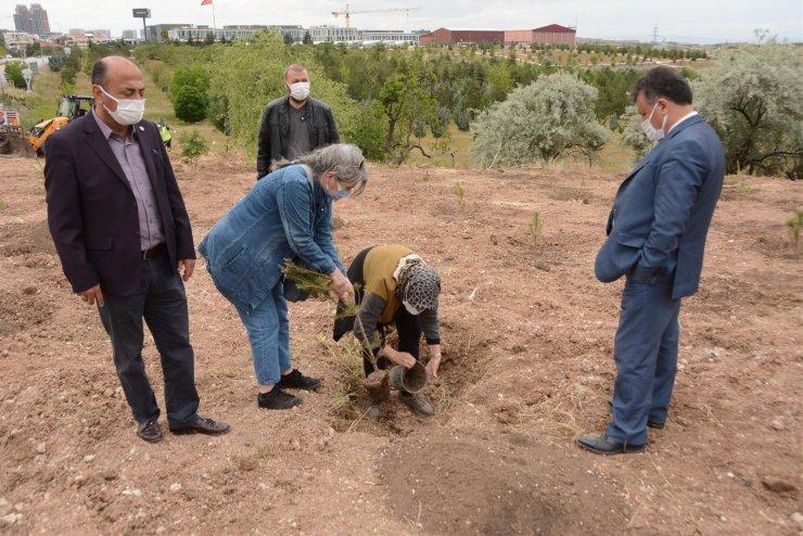 Ankara'da DMD kas hastaları için hatıra ormanı