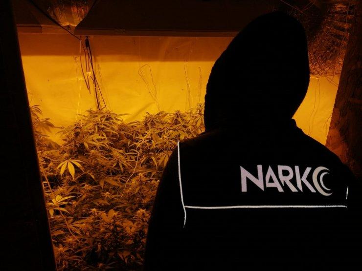 Çankırı'da 2.7 kilogram esrar ele geçirildi, 3 tutuklama