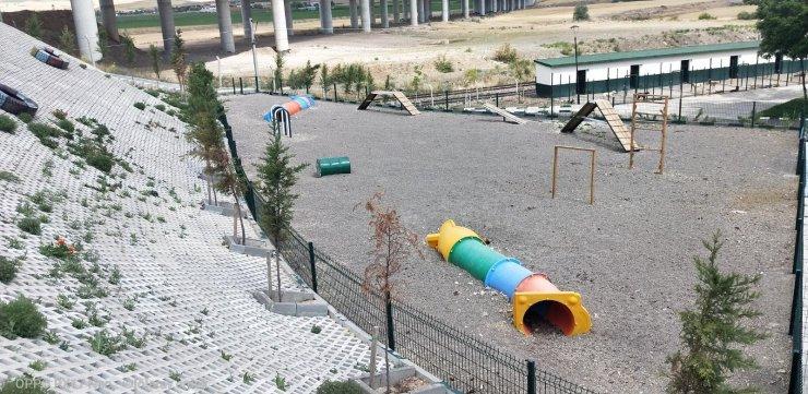 """Sincan'da sokak köpeklerinin rehabilite edileceği """"Eğitim Parkuru"""" tamamlandı"""