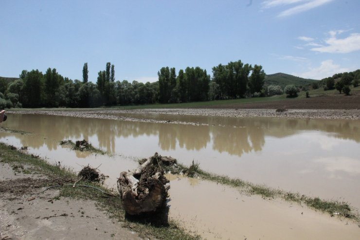 Yozgat'ta etkili olan sel ekili alanlara zarar verdi