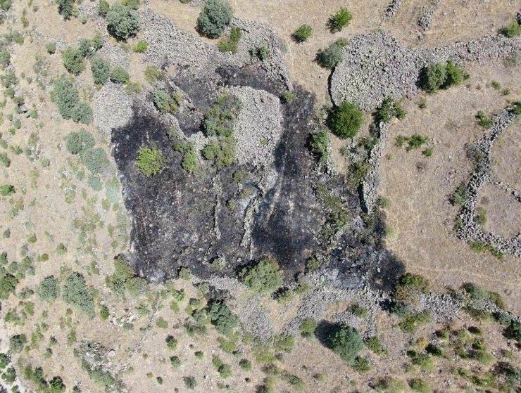 Vatandaşların müdahalesi bin 200 ağacı kurtardı