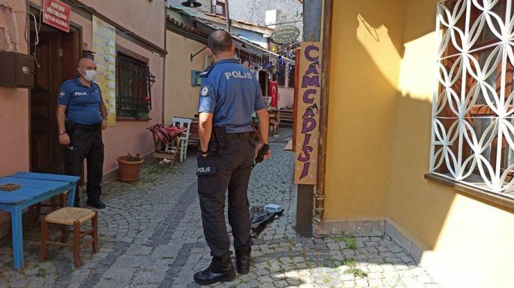 Eskişehir'de kedi vahşeti