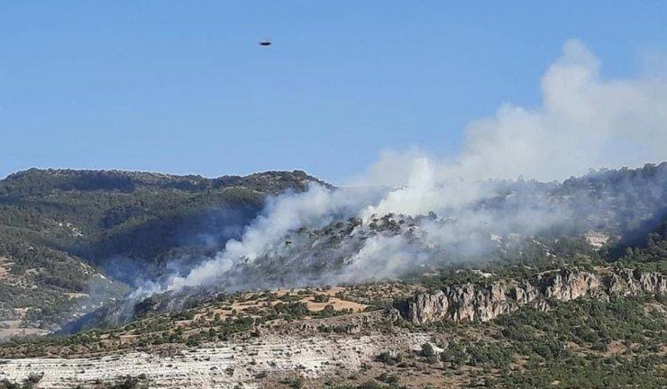 Başkent'te ormanlık alanda yangın