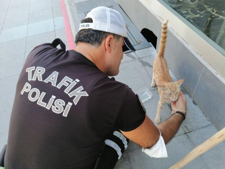 Aksaray'da polisin hayvan sevgisi yürekleri ısıttı