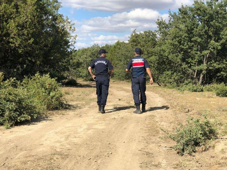 Jandarma'dan orman yangınlarına karşı uyarı