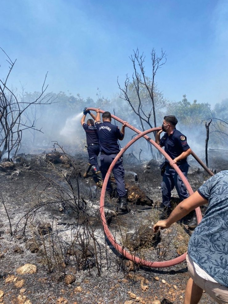 Jandarma Genel Komutanlığı 2 bin 310 personeliyle yangınla mücadele ediyor